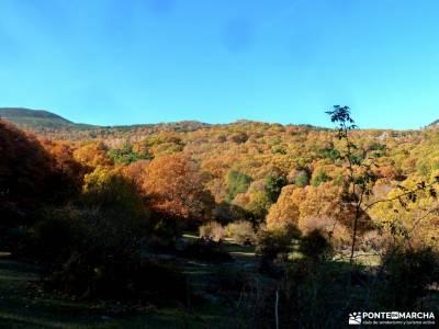 Castañar de El Tiemblo;Ávila; grupos de senderismo tarjeta federativa senderismo en madrid rutas c